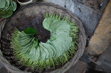 Betel leaves. Paan is chewed as a palate cleanser. The filling consists of a mixture of cardamom, cloves, and tobacco held together with a toothpick.